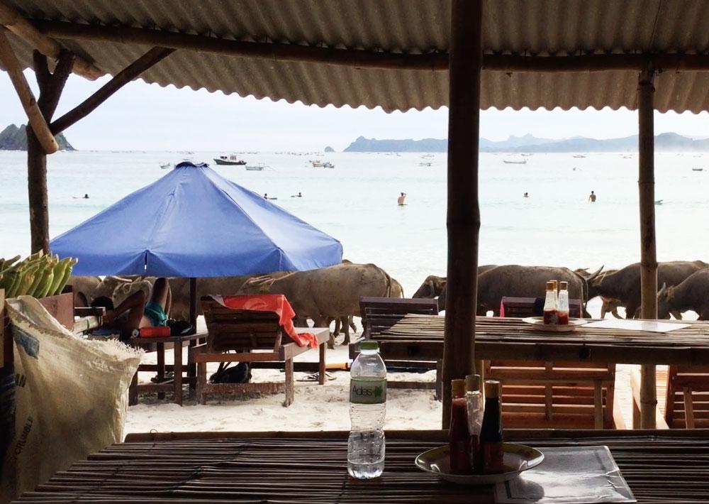 kuta lombok Bali