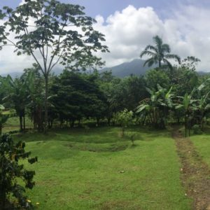 anita rainforest Costa Rica écolodge