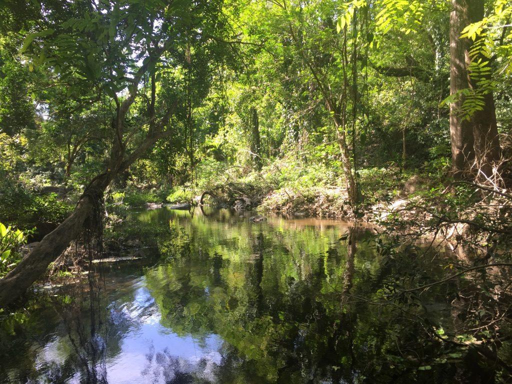 rivière llanos de cortes