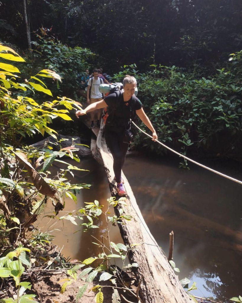 trek taman negara malaisie