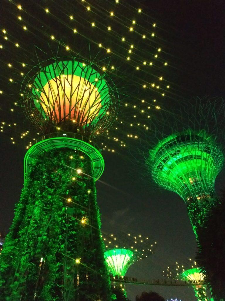 supertrees singapour