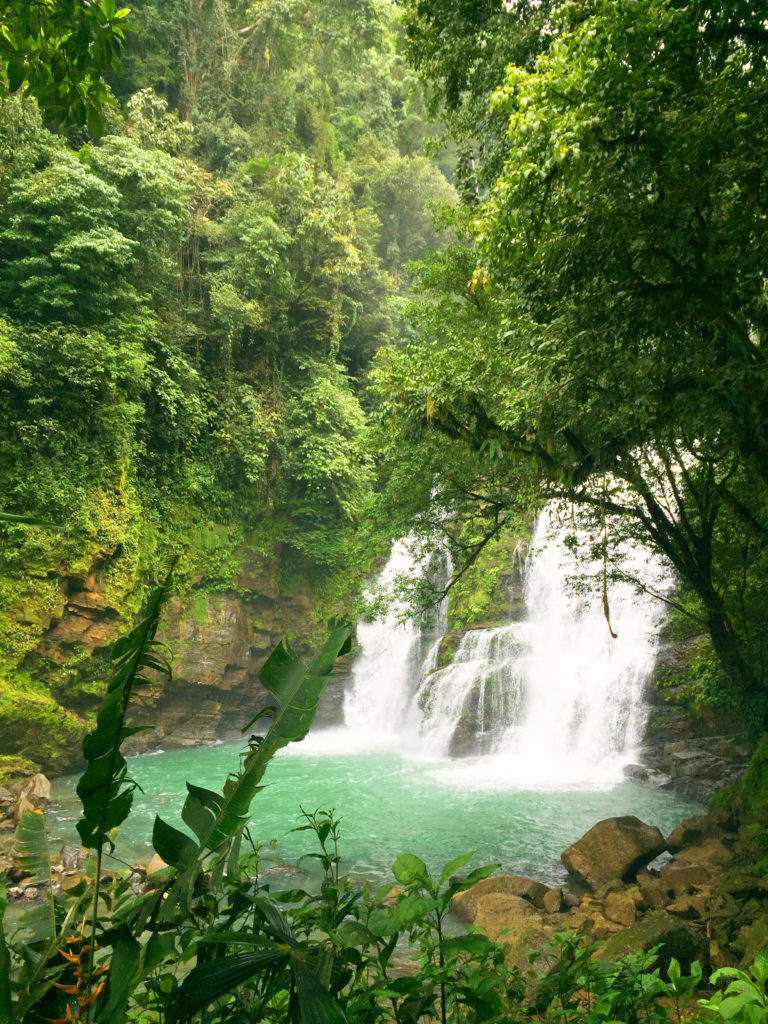 cascade de nauyauca