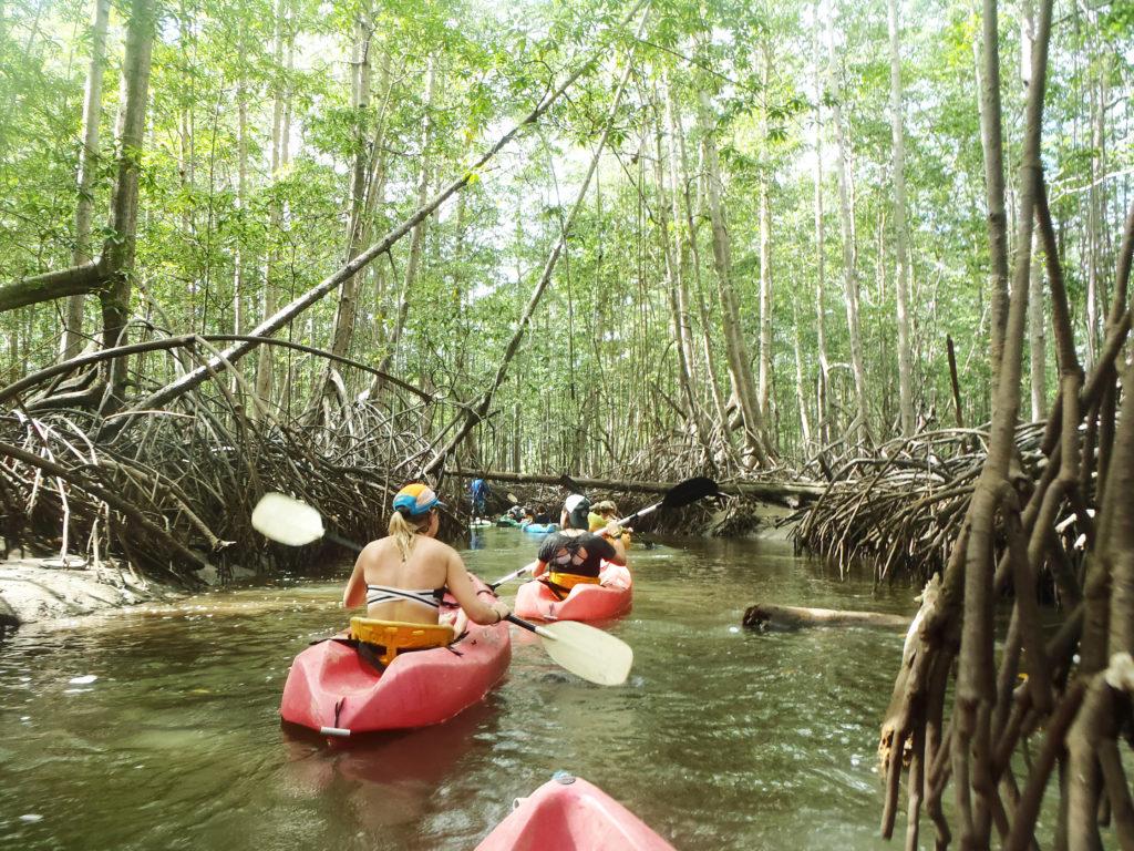 canoe uvita