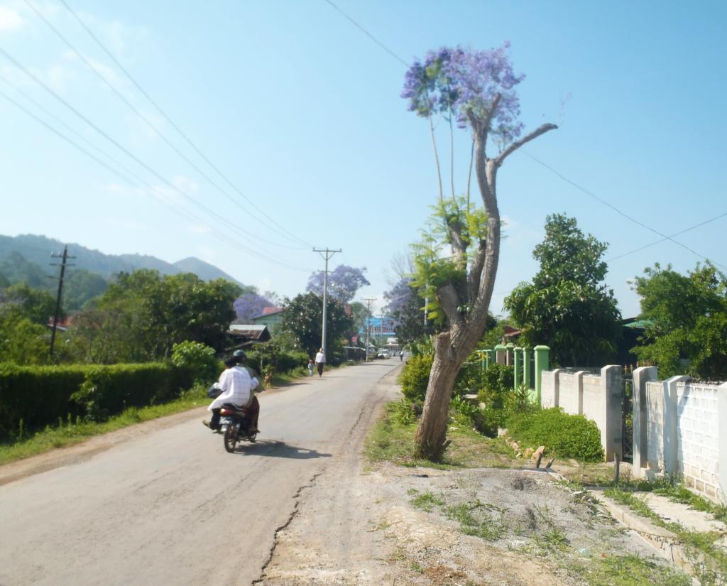 route birmanie
