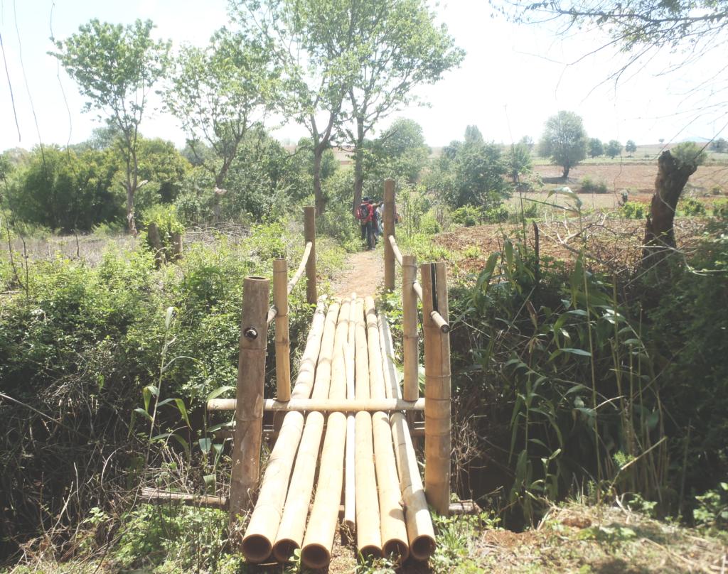 pont bambou